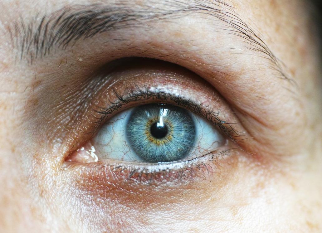eyebrow-1792296_1920